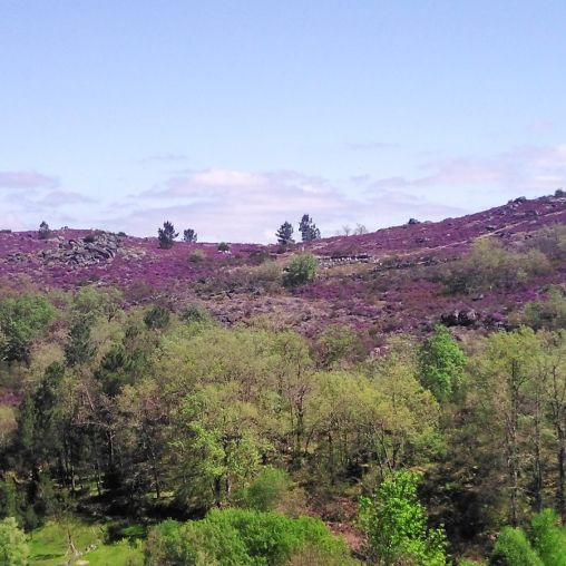 Serra do Xurés Ourense
